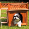 Wondering Where to Buy a Dog House? Buy the Best Home for Your Pet at Amazon